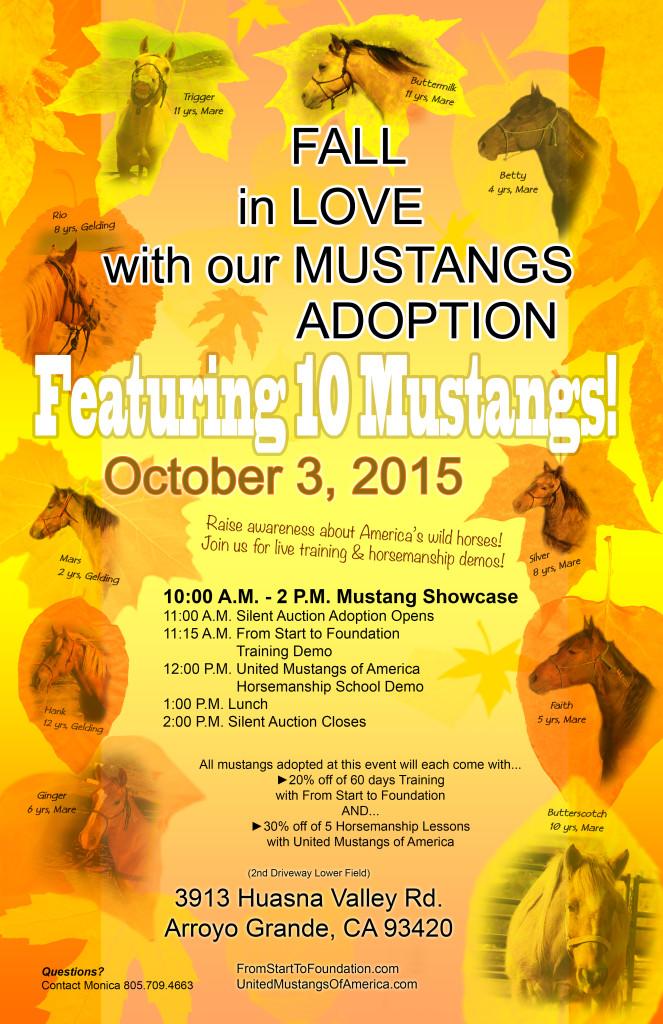 Mustang Adoption 2015